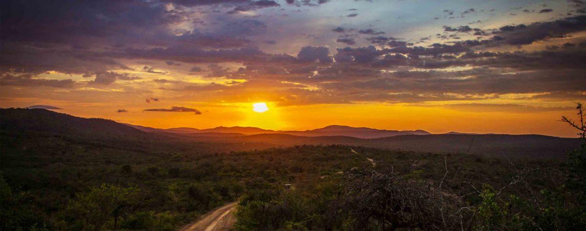 Voyage en Afrique du Sud – L'expérience de Nathalie